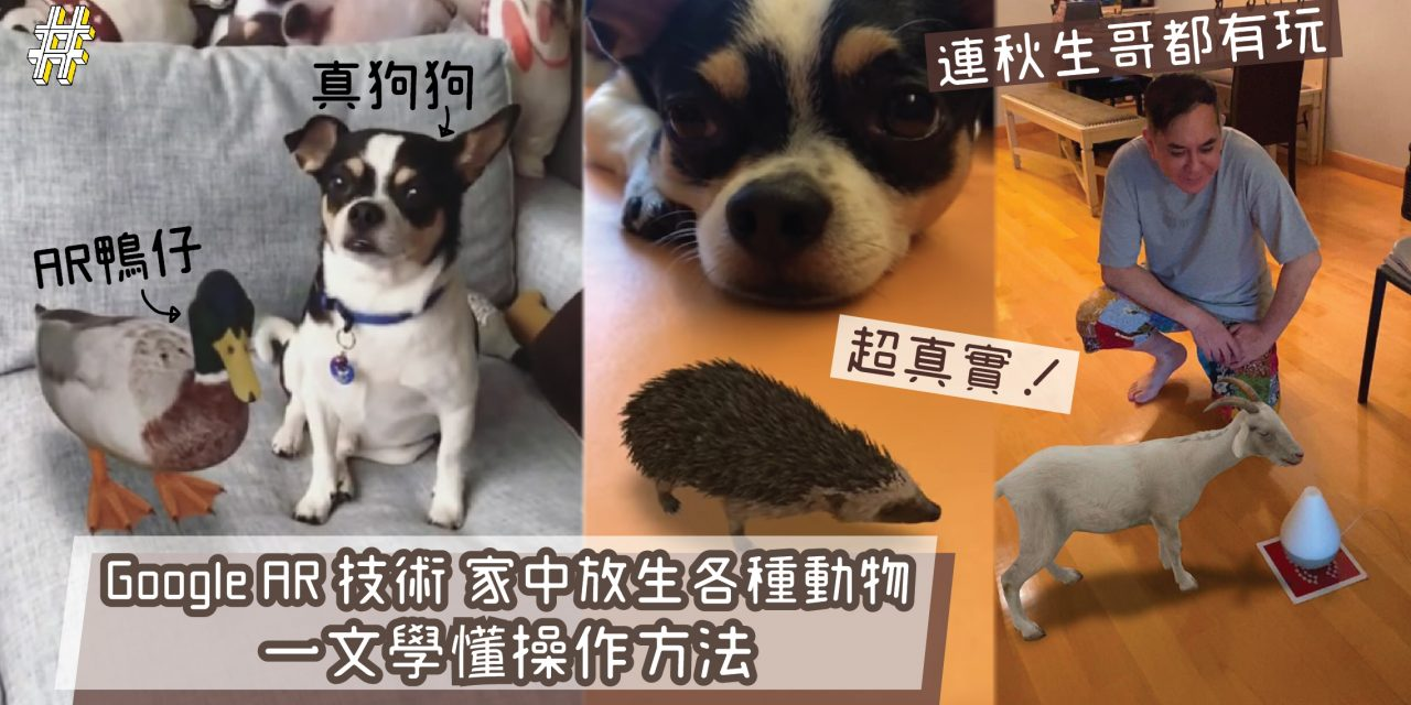 【Stay at home】Google AR 技術 家中放生各種動物 一文學懂操作方法